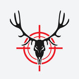 Deer skull on red target Stock Photos