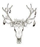 Deer Skull Vector Royalty Free Stock Photos