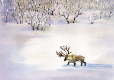 Deer in the snow. Beautiful deer in the snow in winter forest painted in watercolor Royalty Free Stock Photo