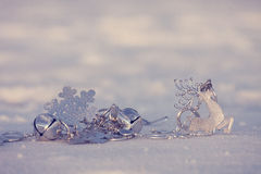 Deer in the snow Stock Photography