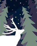 Deer in spruce forest. Night. Deer in spruce tree forest. Night landscape. Vector flat illustration Stock Images