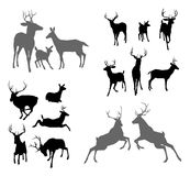 Deer stag fawn and doe silhouettes. A set of deer silhouettes including fawn, doe bucks and stags in various poses. Also a family group pose and two stags Royalty Free Stock Photos