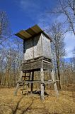 Deer stand on four posts Stock Photography