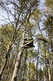 Deer Stand. A wooden perch high in a tree for a hunter to spot deer from concealment Stock Image