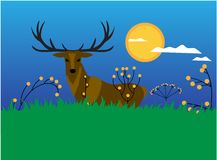 Deer standing on the meadow royalty free illustration