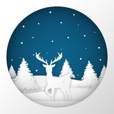 Deer standing in a snow field in Christmas night. Stock Images