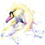 Deer T-shirt graphics, deer illustration with splash watercolor textured background.Swan T-shirt graphics, Swan illustration with Stock Images
