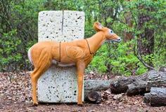 Deer Target Royalty Free Stock Photos