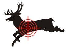 Deer, target Stock Images