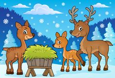 Deer theme image 1 Royalty Free Stock Photo