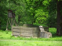 Deer trap and bryony Royalty Free Stock Photo