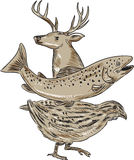 Deer Trout Quail Drawing. Drawing sketch style illustration of a deer, trout and quail viewed from the side set on isolated white background Stock Image