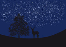 Deer under the starry sky. Night landscape with deer, trees and countless stars. Vector illustration of landscape. Night background. Illustration of a night Stock Photography