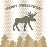 Deer vector christmas card greeting on knitted pattern. Stock Image