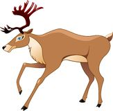 The deer in a vector Stock Photo