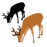 Deer vector illustration style Flat set Royalty Free Stock Photography