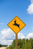 Deer Warning Sign Royalty Free Stock Image