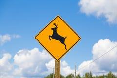 Deer Warning Sign Stock Image