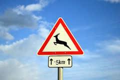 Deer warning sign. Red and white Deer warning sign against cloudy blue sky Royalty Free Stock Photos