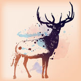 Deer watercolor painting design template vector image. Deer watercolor painting vector design template Royalty Free Stock Photos