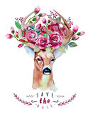 Deer watercolor. Save the date. eps 10. Wedding Stock Image