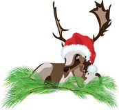 Deer wearing a Santa Claus hat Royalty Free Stock Photography