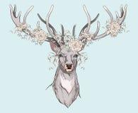 Deer with wedding decorations Stock Photos