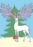 Deer. White deer with large florid antlers Royalty Free Stock Photo