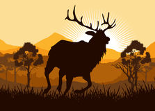 Deer in wild nature landscape illustration Stock Photography