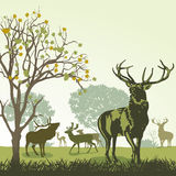 Deer and wildlife. An illustration of deer and wildlife in the autumn Royalty Free Stock Photography