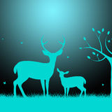Deer Wildlife Indicates Night Time And Darkness Royalty Free Stock Photo
