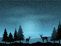 Deer in winter landscape. Silhouettes of deer in a winter landscape Royalty Free Stock Photography