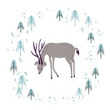Deer in winter pine forest  on white. Royalty Free Stock Photography