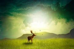 DeerDream Lizenzfreie Stockfotos
