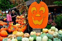Deerfield, Massachusetts:  People Shopping for Pumpkins Stock Photos