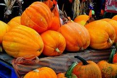 Deerfield, Massachusetts:  Pumpkins at Roadside Farmstand Stock Image