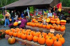 Deerfield, Massachusetts:  Pumpkins at Roadside Farmstand Royalty Free Stock Photo