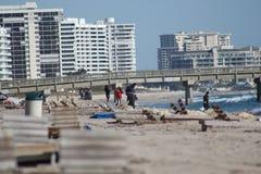 Deerfield plaża Zdjęcia Stock