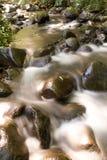 Deerhorn Nebenfluss Stockfotos