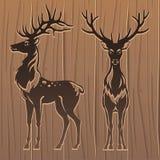 Deers στο ξύλινο υπόβαθρο διανυσματική απεικόνιση