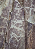 Deers - Altai Rock paintings of ancient hunters Royalty Free Stock Images