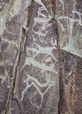 Deers - Altai-Rotsschilderijen van oude jagers royalty-vrije stock afbeeldingen