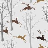 Deers in bos Royalty-vrije Stock Afbeeldingen