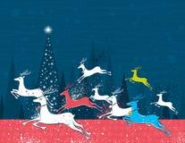 Deers courants de Noël dans la forêt bleue Photographie stock