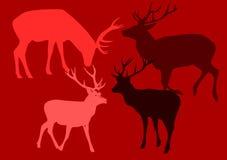 Deers di Popart. Immagine Stock Libera da Diritti