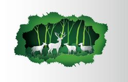 Deers in the forest. Stock Image