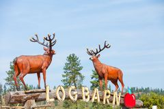 Deers at  Log Barn 1912  Throwback Roadside Attraction Stock Photo