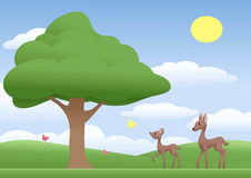 Deers on a meadow Royalty Free Stock Photo