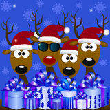 Deers with red santa hat Royalty Free Stock Photography