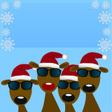 Deers with red santa hat Stock Photo